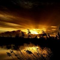 Sonnenuntergang an der Vechte in Neuenhaus (Quelle: Johann Mack/ privat)