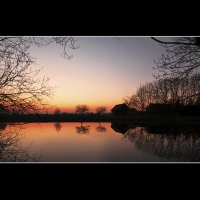 Sonnenuntergang Osterwald (Quelle: Ralf Prigge/ privat)