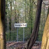 Bad Bentheim (Quelle: Gerhard Vellage/ privat)